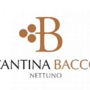 Video Cantina Bacco